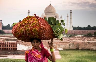Agra, Uttar Pradesh, India. September 2017